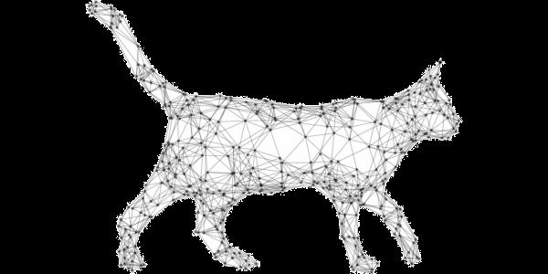 Pet immunity schematic large